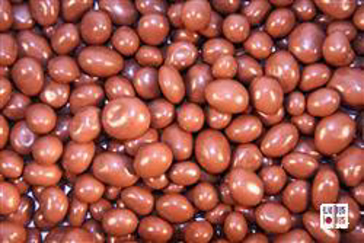 Milk Choc Sultanas in 1kg bag