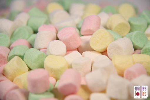 Mini Pastel  Marshmallows in 4KG BOX