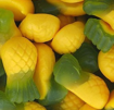 Picture of Allen's Pineapples in 1.3kg Bag